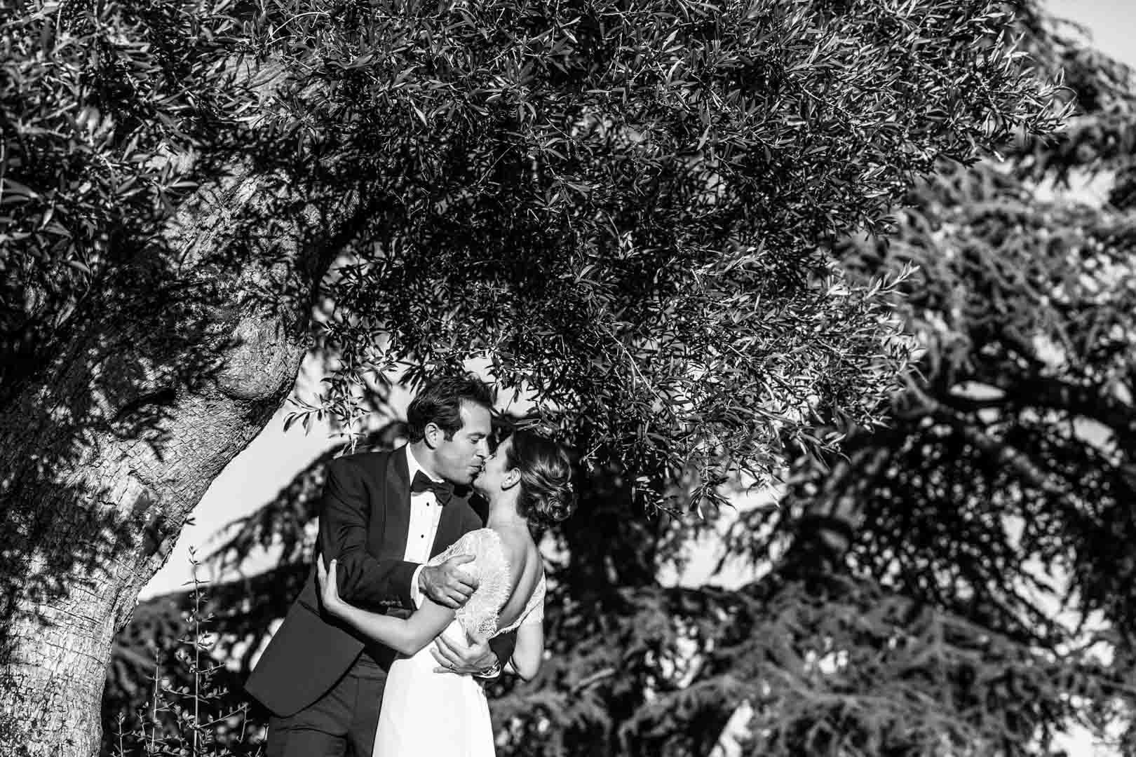 couple-marie-baiser-sous-arbre