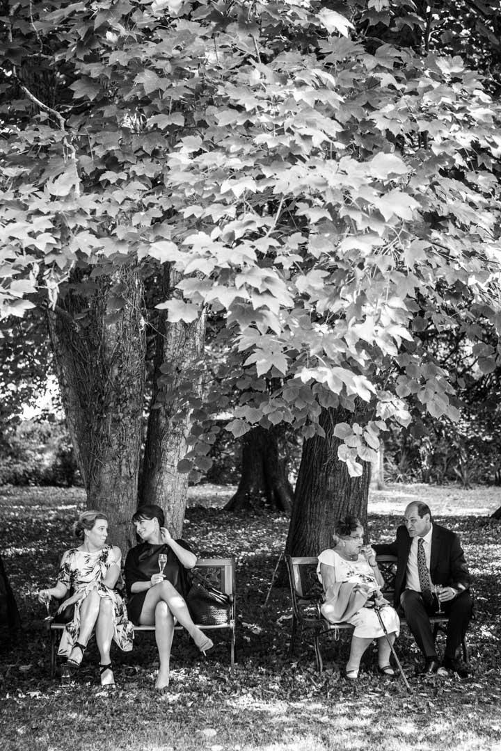couples-sous-arbre
