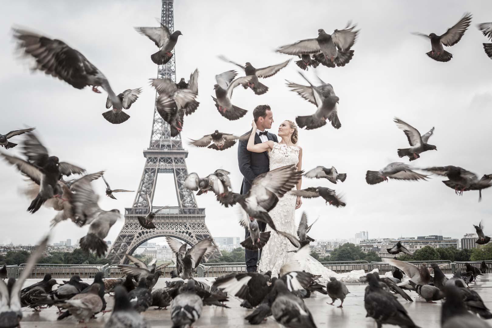 couple transi entre pigeon et tour eiffel